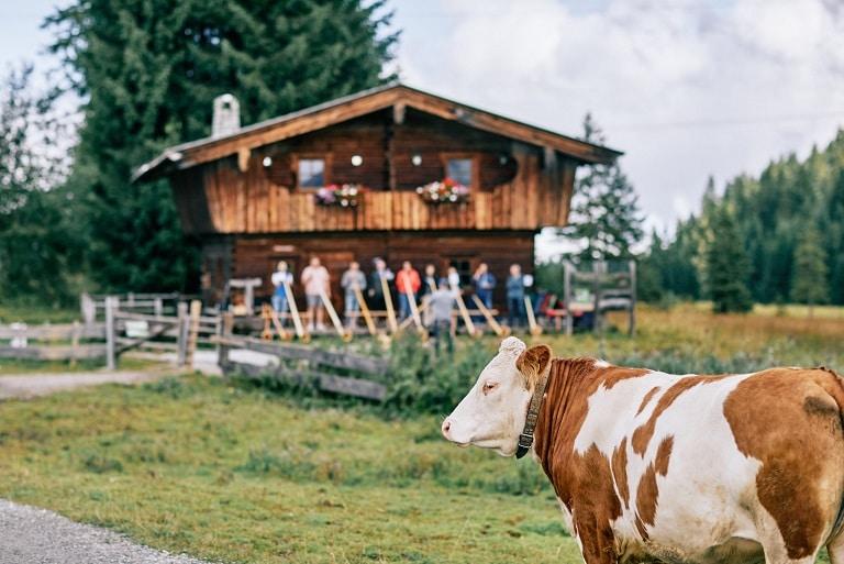 Kuh Hütte